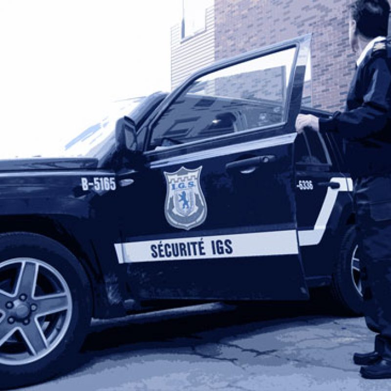 IGS-car2